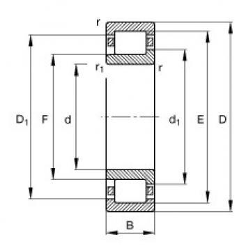 Bearing NJ206-E-TVP2 FAG