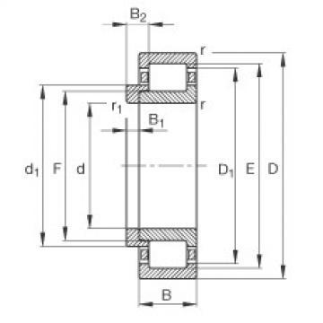 Bearing NJ206-E-TVP2 + HJ206-E FAG
