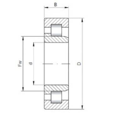 Bearing NJ206/28.5ECP/VC025 SKF