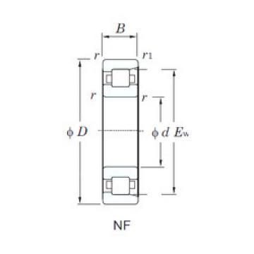 Bearing NF220 KOYO