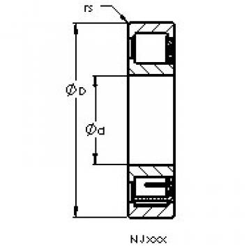 Bearing NJ206 EM6 AST