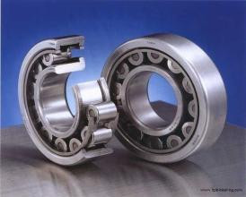 Bearing 1000TDI1320-1