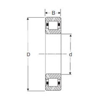 Bearing NUP 2305 SIGMA
