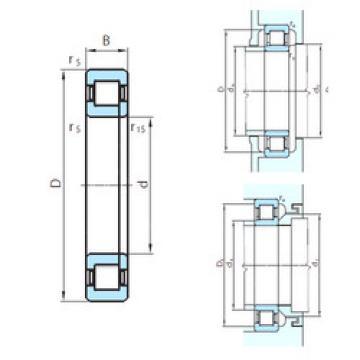 Bearing NUP29/1060 PSL